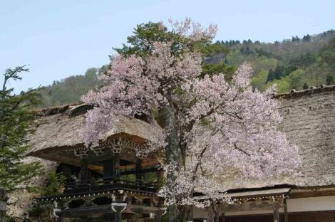 06050501shirakawagou